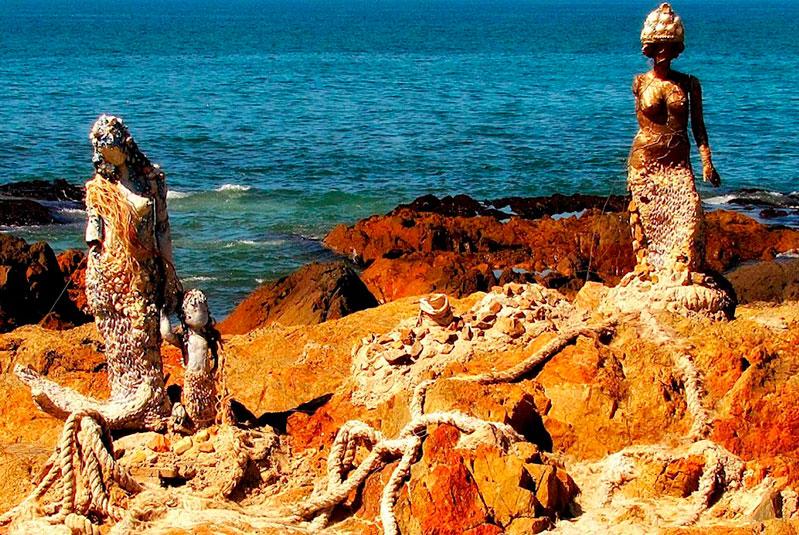 sirenitas-en-las-rocas-de-la-peninsula